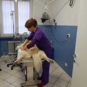 preparazione pz anestesia